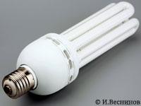 Фотография большой энергосберегающей лампочки. Автор фото Игорь Веснинов.